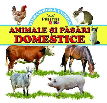 Animale si pasari domestice 0
