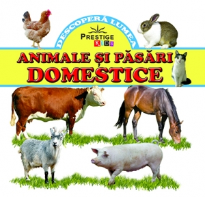 Animale si pasari domestice0