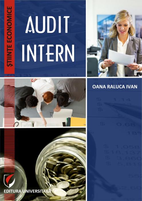 Audit intern 0