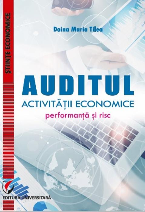 Auditul activitatii economice. Performanta si risc 0