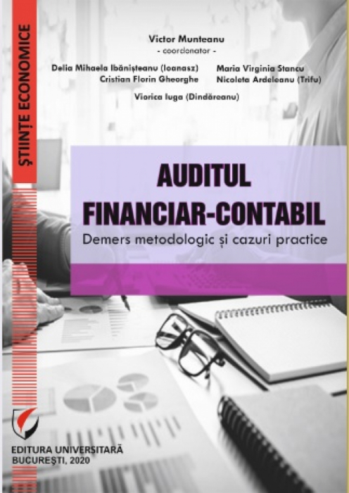 Financial-Accounting Audit. Methodological Approach and Practical Cases 0