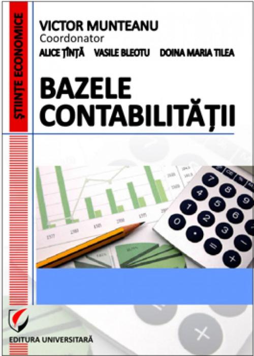 Bazele contabilitatii 0