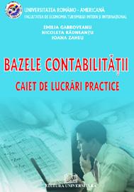 Basis of Accounting - Tender practical work 0