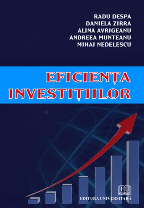 Eficienţa investiţiilor 0