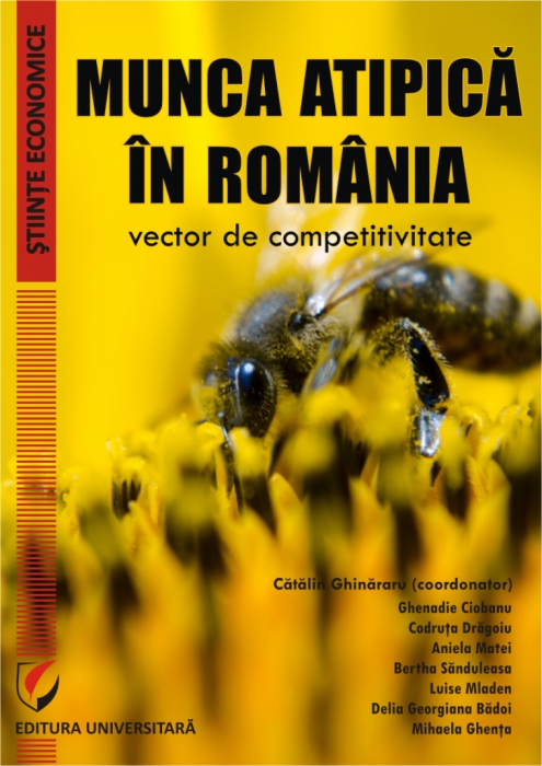 Munca atipica in Romania - vector de competitivitate 0