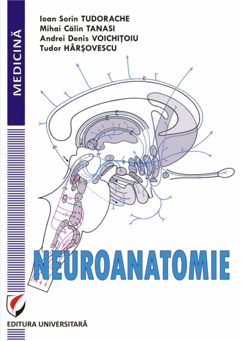 NEUROANATOMIE 0