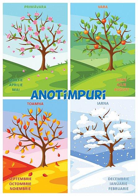ANOTIMPURI - puzzle podea 50/70 + afis 50/70 [1]