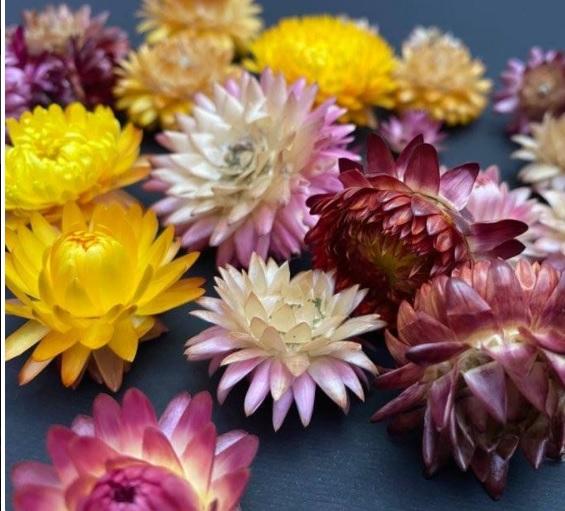 Capete flori de paie [1]