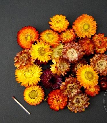 Capete flori de paie [0]