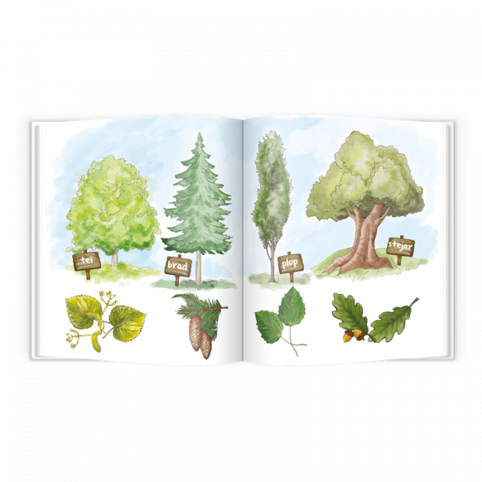 Carte educativa Pupo invata sa protejeze natura [2]