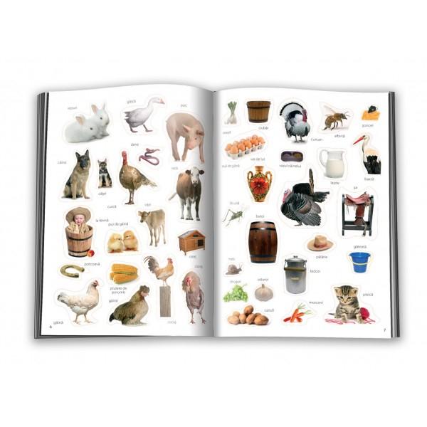 Animale domestice - abtibild - carte cu activitati [1]