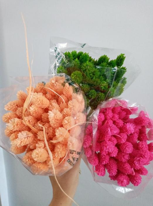 Flori uscate - Tallaris diferite nuante 1