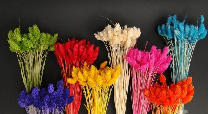 Flori uscate - Tallaris diferite nuante 0