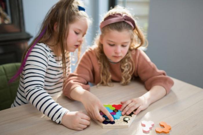 Puzzle Beezzz BS Toys - stup de albine [1]