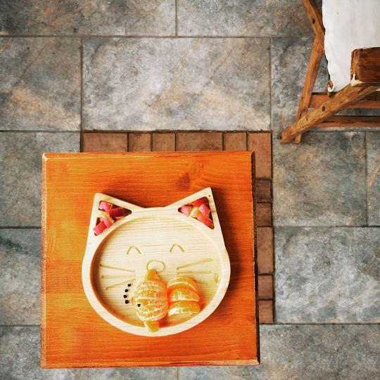 Tavita pisica 2