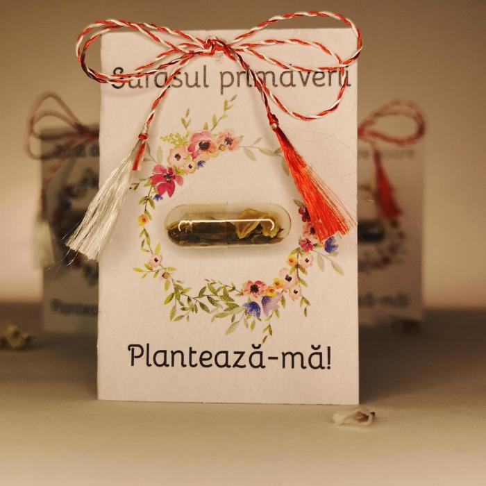 Plantisor - martisor cu seminte de flori Surasul primaverii 0