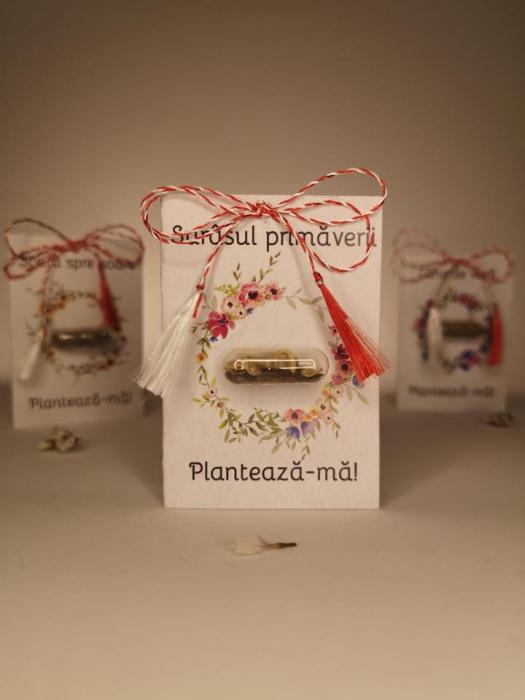 Plantisor - martisor cu seminte de flori Surasul primaverii 1