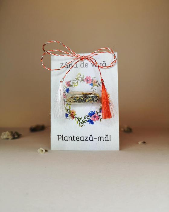 Plantisor - martisor cu seminte de flori Zana de Vara 1