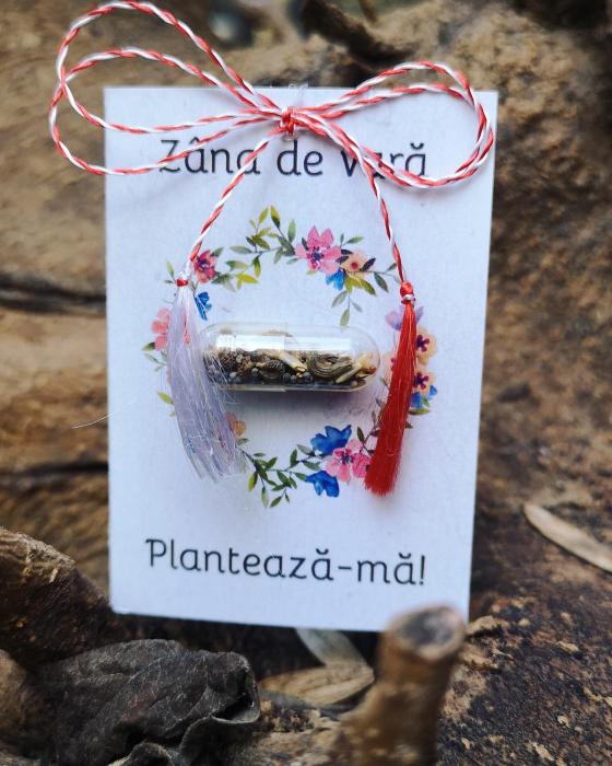 Plantisor - martisor cu seminte de flori Zana de Vara 0