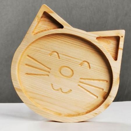 Tavita pisica1