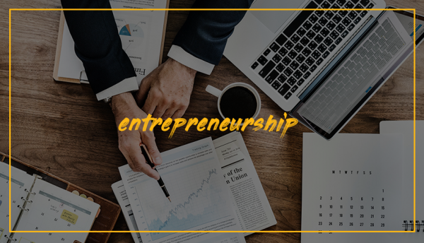 Curs Introducere în Antreprenoriatul Românesc 0