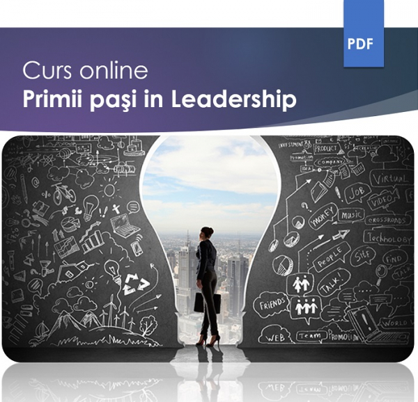 Curs Leadership – Primii pasi in managementul echipelor 0