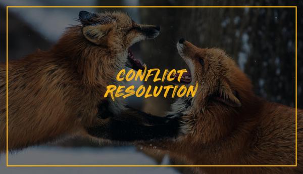 Curs Strategii de Gestionare a Conflictelor