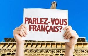 Curs Franceza Adulti