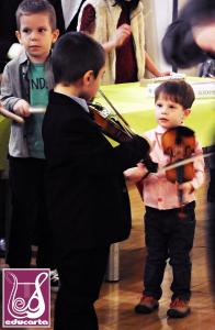 Lecții de vioară