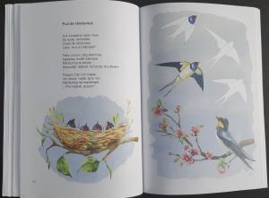 Magia punctelor - carte de poezii interactive pentru copii3