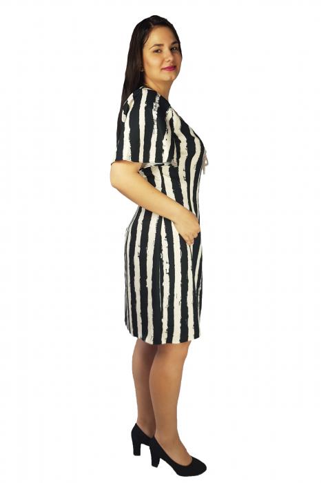 Rochie Dalia cu dungi verticale 2