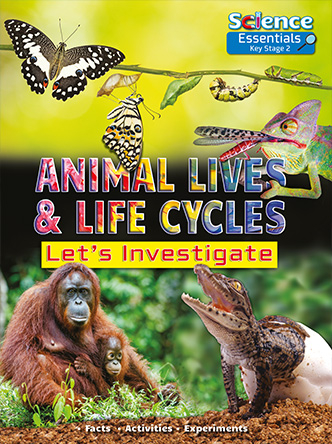 Animal Lives and Life Cycles: Let's Investigate (Science Essentials) [0]