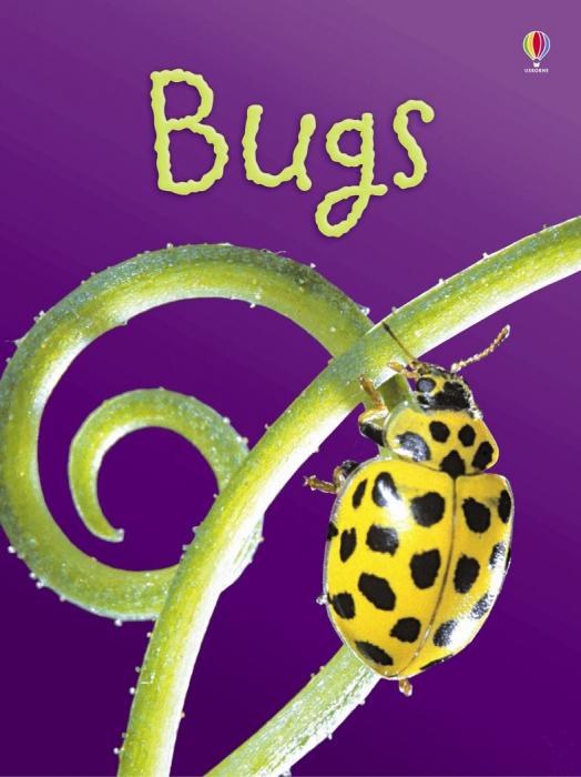 Bugs [0]