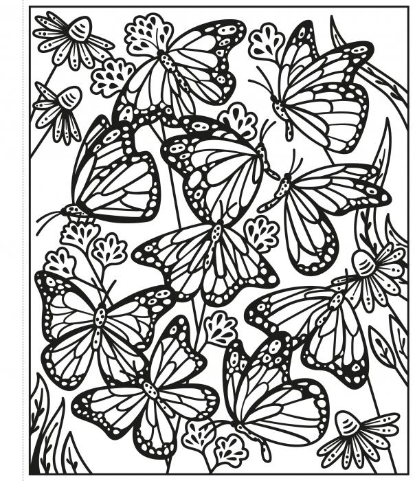 Butterflies Magic Painting Book [2]