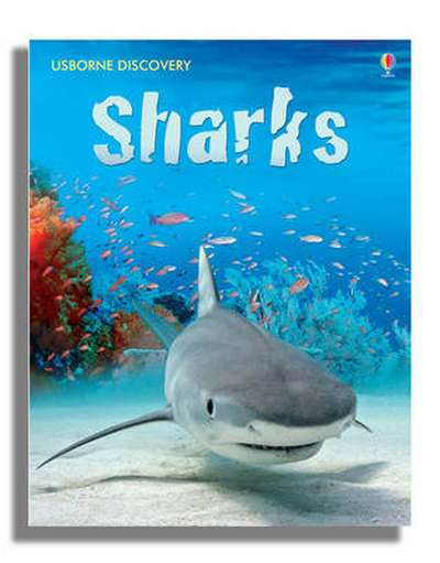 Discovery Sharks [0]