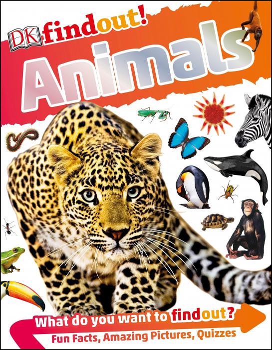 DKfindout! Animals [0]
