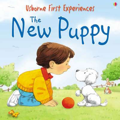 First Experiences: The New Puppy mini edition [0]