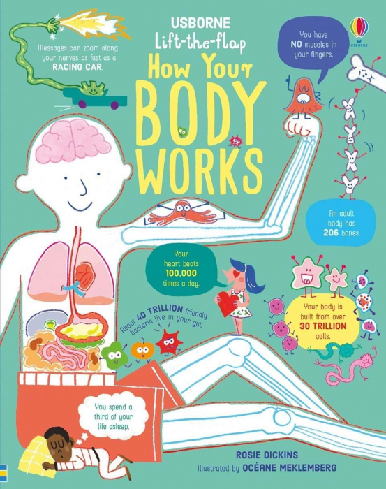 Lift the Flap How Your Body Works [0]