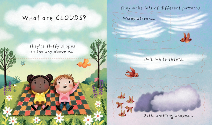 Lift-the-flap Very First Questions and Answers What are clouds? [1]