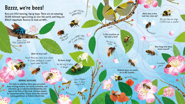 Look Inside the World of Bees [2]