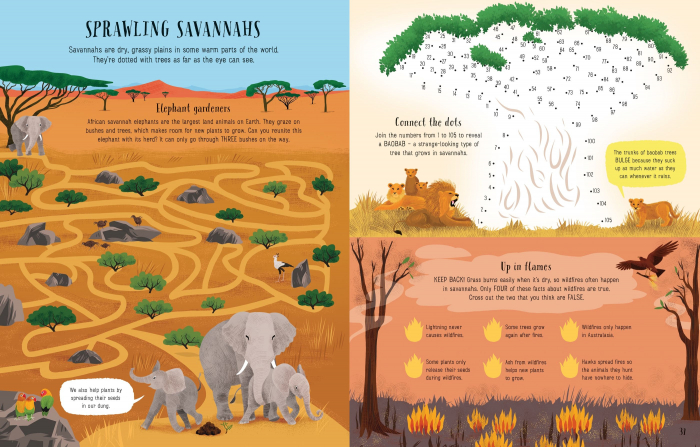Planet Earth Activity Book [2]