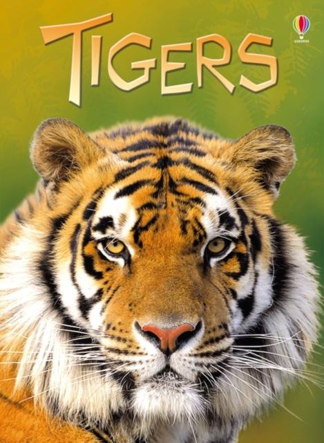 Tigers [0]
