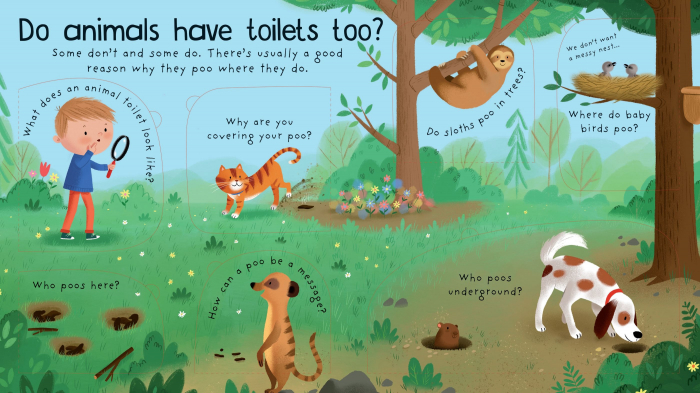 Where Does Poo Go? [1]