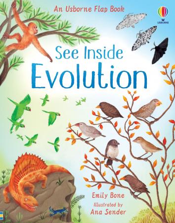 See Inside Evolution [0]