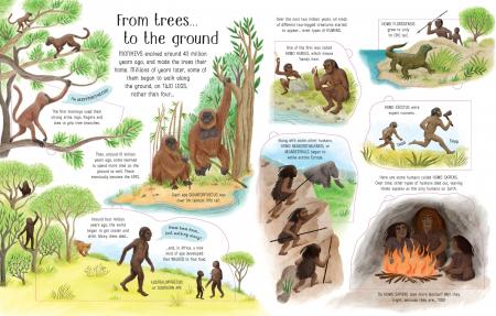 See Inside Evolution [3]