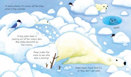 Peep Inside Snowy Places [3]