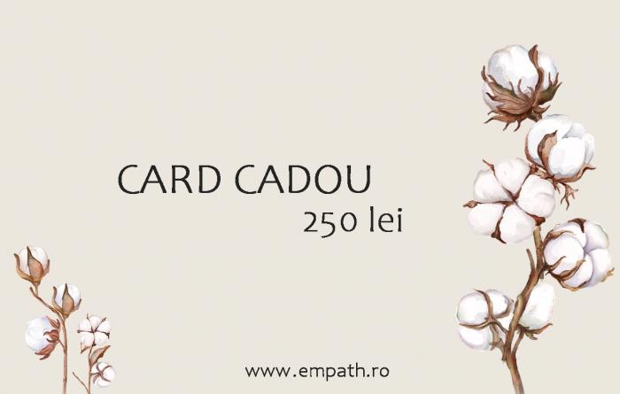 Card Cadou - 250lei 0