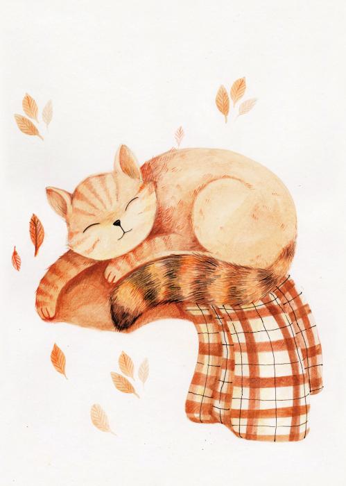Tablou Sleeping cat 2