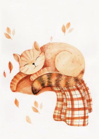 Tablou Sleeping cat2