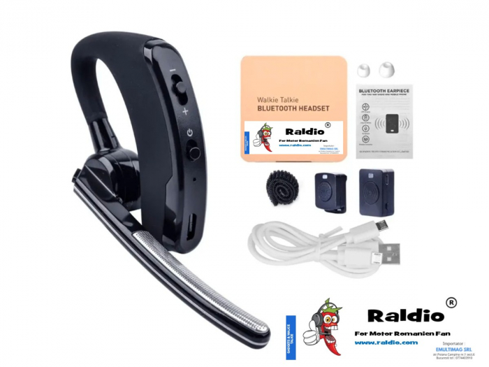 RALDIO - Set Bluetooth pentru Statii emisie receptie mufa K 1